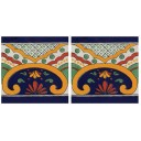 Mexican Talavera Border Tile Saucillo