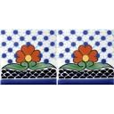 Mexican Talavera Border Tile Tijuana